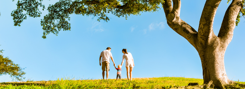 Young family holding hands under tree